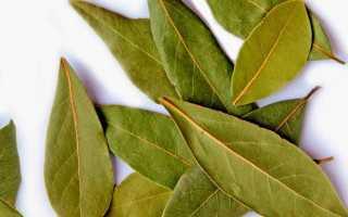 Основа многих народных рецептов лавровый лист при псориазе