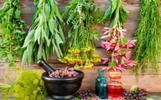 Поддерживающая терапия с использованием трав при псориазе