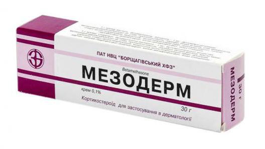 Мезодерм