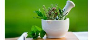 На основе лекарственного растения
